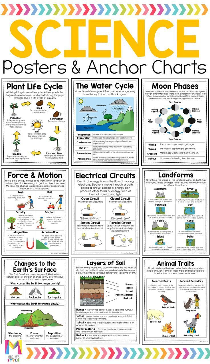 Science Poster Bundle Third Grade Science Experiments Third Grade Science Projects Science Anchor Charts