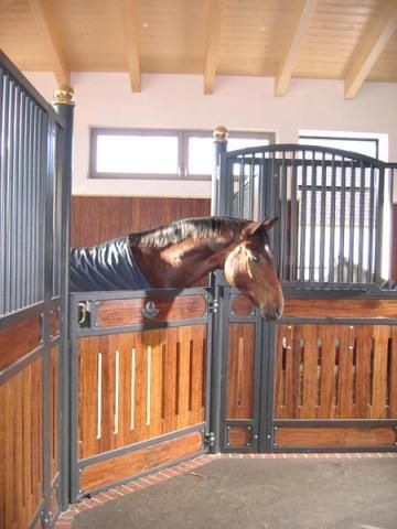 1000+ Images About Horse Barn - Stall Design/Look On Pinterest