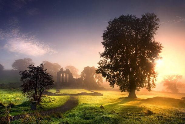 Ireland :): Stephen Emerson, Favorite Places, Places I D, Inch Abbey, Northern Ireland, Enchanted Abbey, Travel, Landscape, Photo
