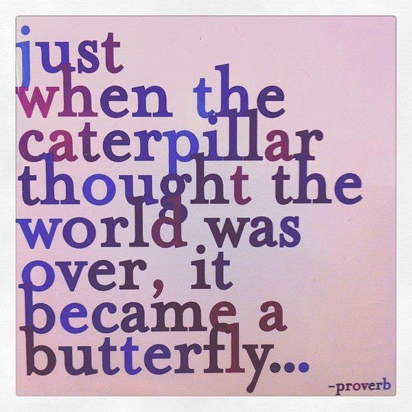 just when she thought the world was over...: Life, Proverbs, Butterflies, Caterpillar Thoughts, Beautiful, Favorite Quotes, Living, Inspiration Quotes, Over It