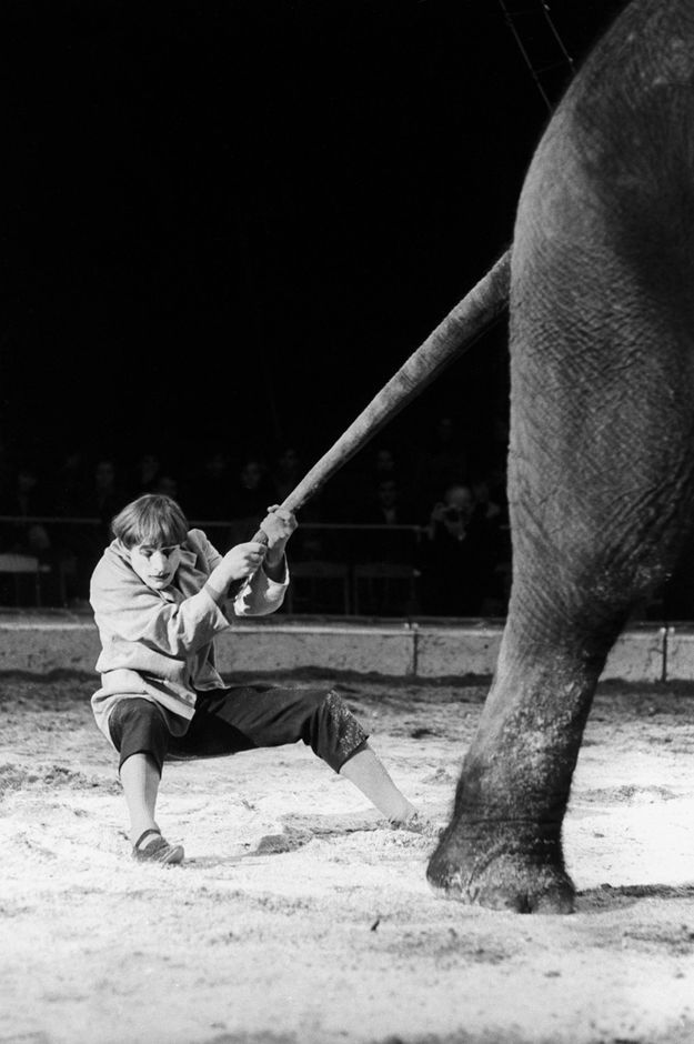 Clown Dimitri wird achtzig | Circusdream.ch - Die Magische Welt über Zirkus und Show