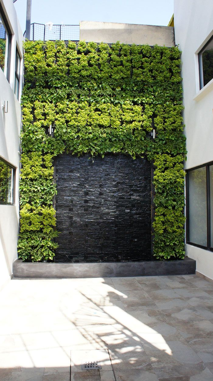 308 best Vertical garden ideas images on Pinterest | Vertical ...