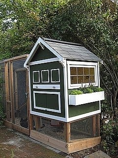 Coop with a window box: Backyard Chickens, Gardens Boxes, Apartment Therapy, Backyard Chicken Coops, Flowers Boxes, Hens, Planters Boxes, Flower Boxes, Window Boxes