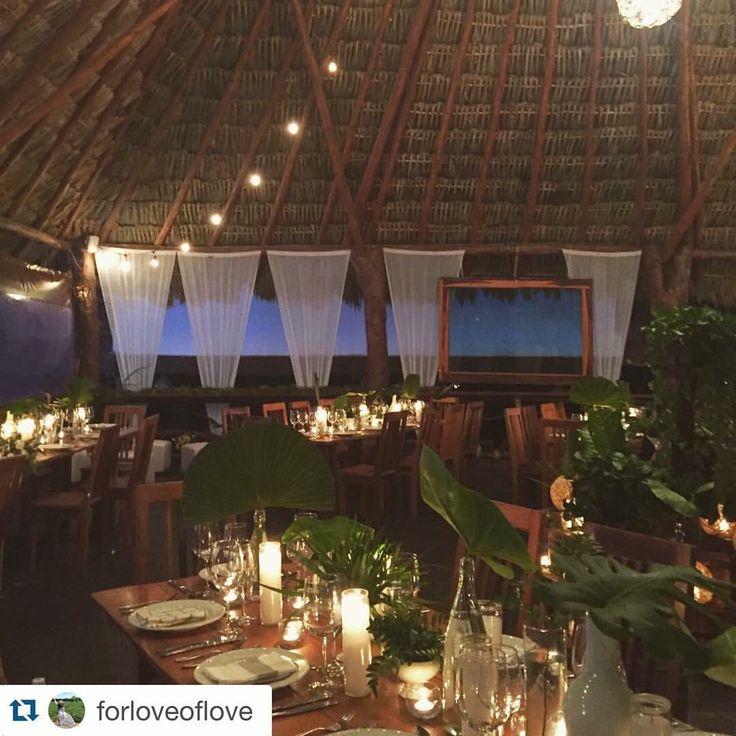 CBV245 Weddings Riviera Maya bottles with greenery centerpieces/ centro de mesa con botellas y follaje verde