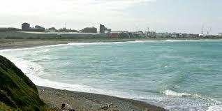 Image result for timaru