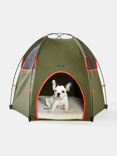 This is the cutest thing ever but I doubt Sophie would sleep alone in her own tent. http://www.withoutwalls.com/ww/catalog/productdetail.jsp?id=32854820&category=WW-GEAR-PETACC#!/