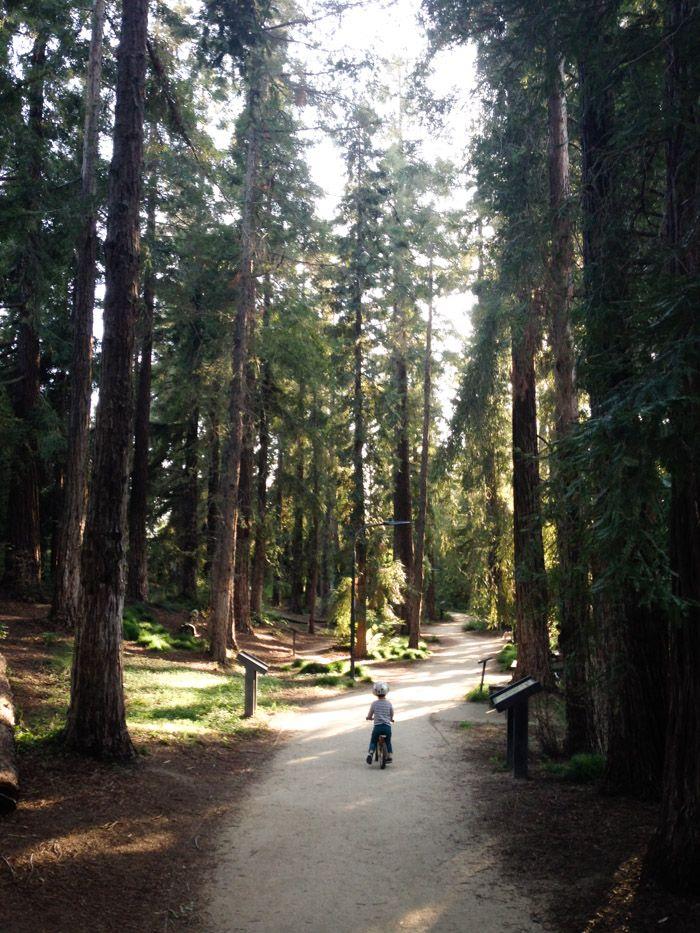 family  UC Davis Arboretum Loop