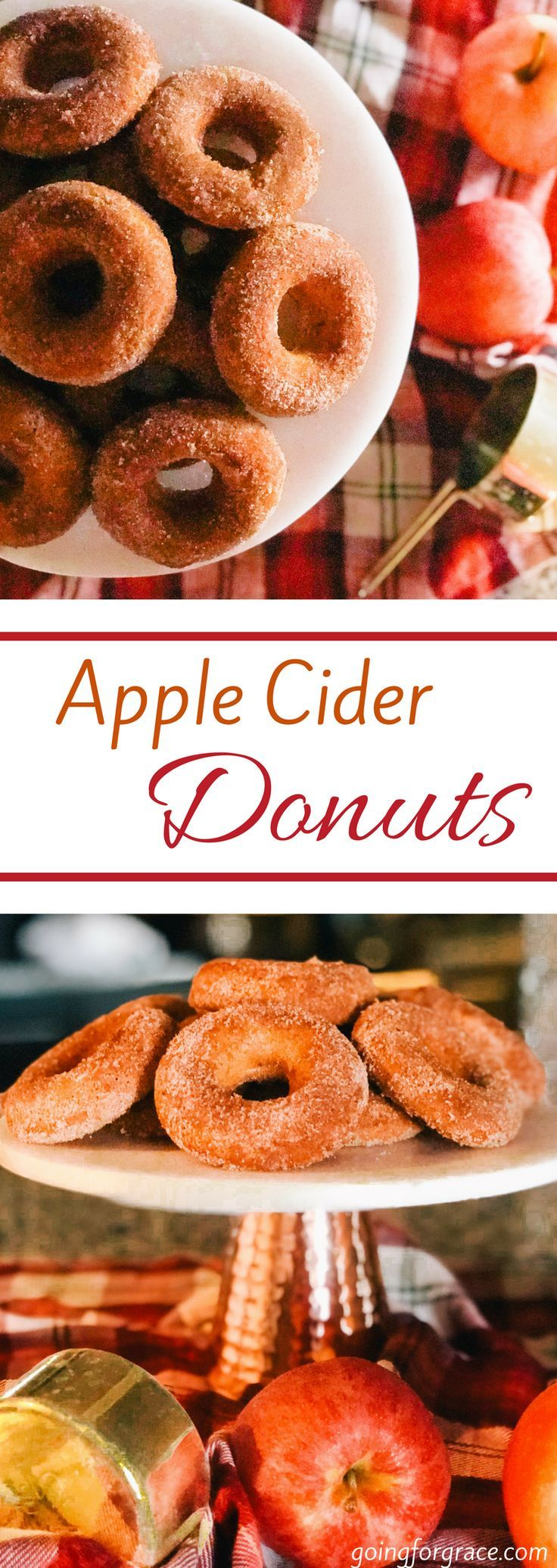An easy and insanely delicious Apple Cider Donut Recipe! Apple cider donuts dipped in a cinnamon nutmeg sugary topping! Perfect for fall breakfast, brunch, or late night snack! Donut recipe, fall recipe, thanksgiving recipe, apple cider recipe