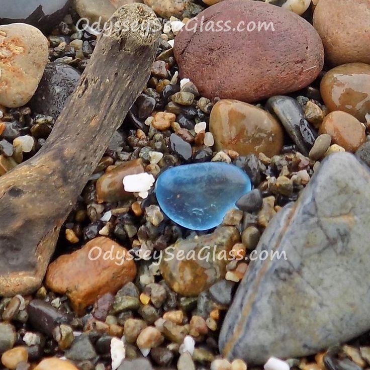 326 Best Beach Finds  U0026 Beachcombing Treasures Images On