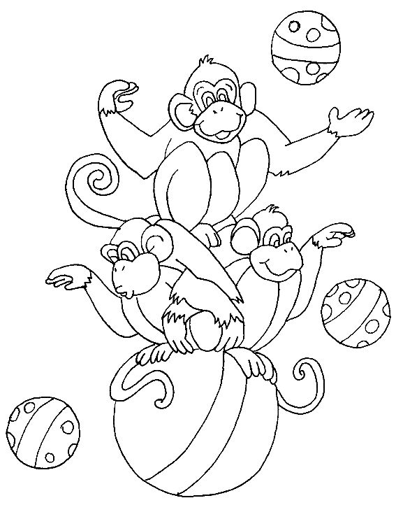 Printable Circus Monkey Coloring Pages For Kidsfree Online Animal Preschool Activities Worksheet