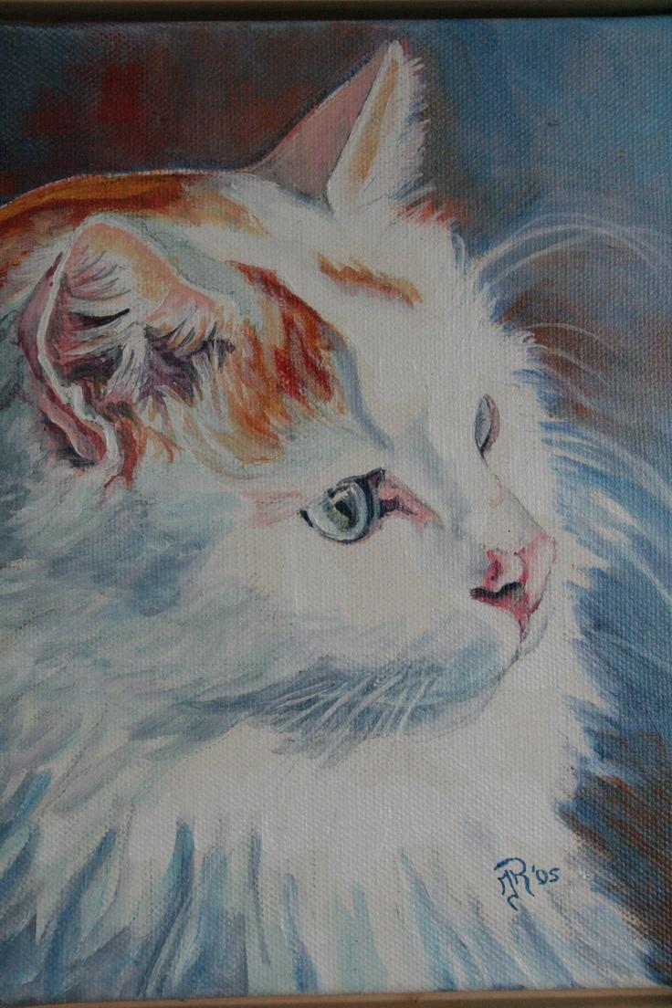 Mustafa, TUV met blauwe ogen