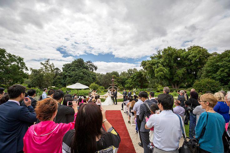 Bill ♥ Jennifer | Adelaide Botanic Gardens Wedding | Festival Function Centre — Best Wedding Photographer in Adelaide | Scott Goh Photography