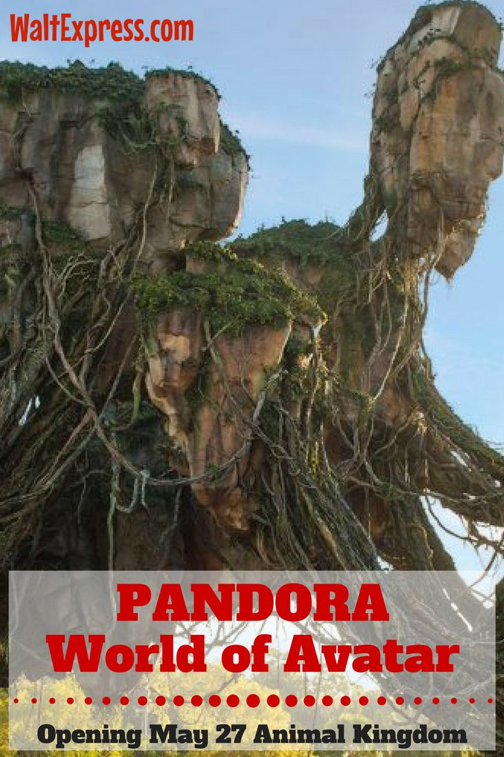 Breaking News: Pandora, World of Avatar in Animal Kingdom OPENING DATE: May 27 in Disney World