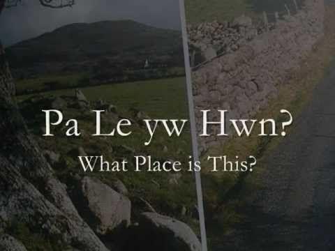 Pa Le yw Hwn? - Steve Eaves.