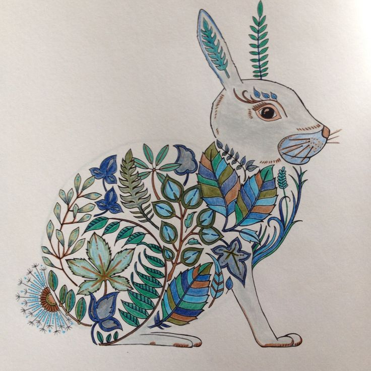 Bunny Johanna Basfordcolours By Diana Pencil DrawingsTattoosIllustrationsJohanna BasfordAdult ColoringColoring Books JasmineBookmarksDiana