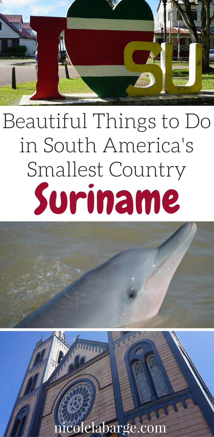 Things to do in South America's Smallest Country, Suriname.  The beauty of #Suriname.