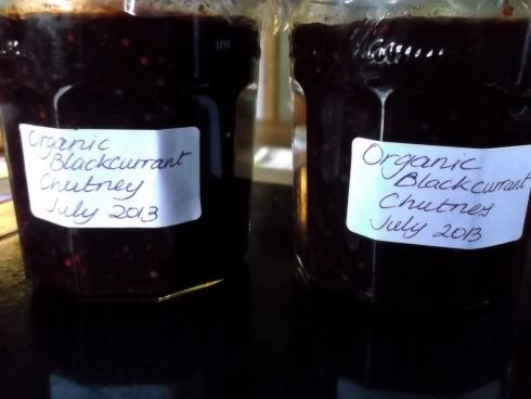 Blackcurrant or jostaberry chutney recipe, from Bealtaine Cottage. #blackcurrant #chutney