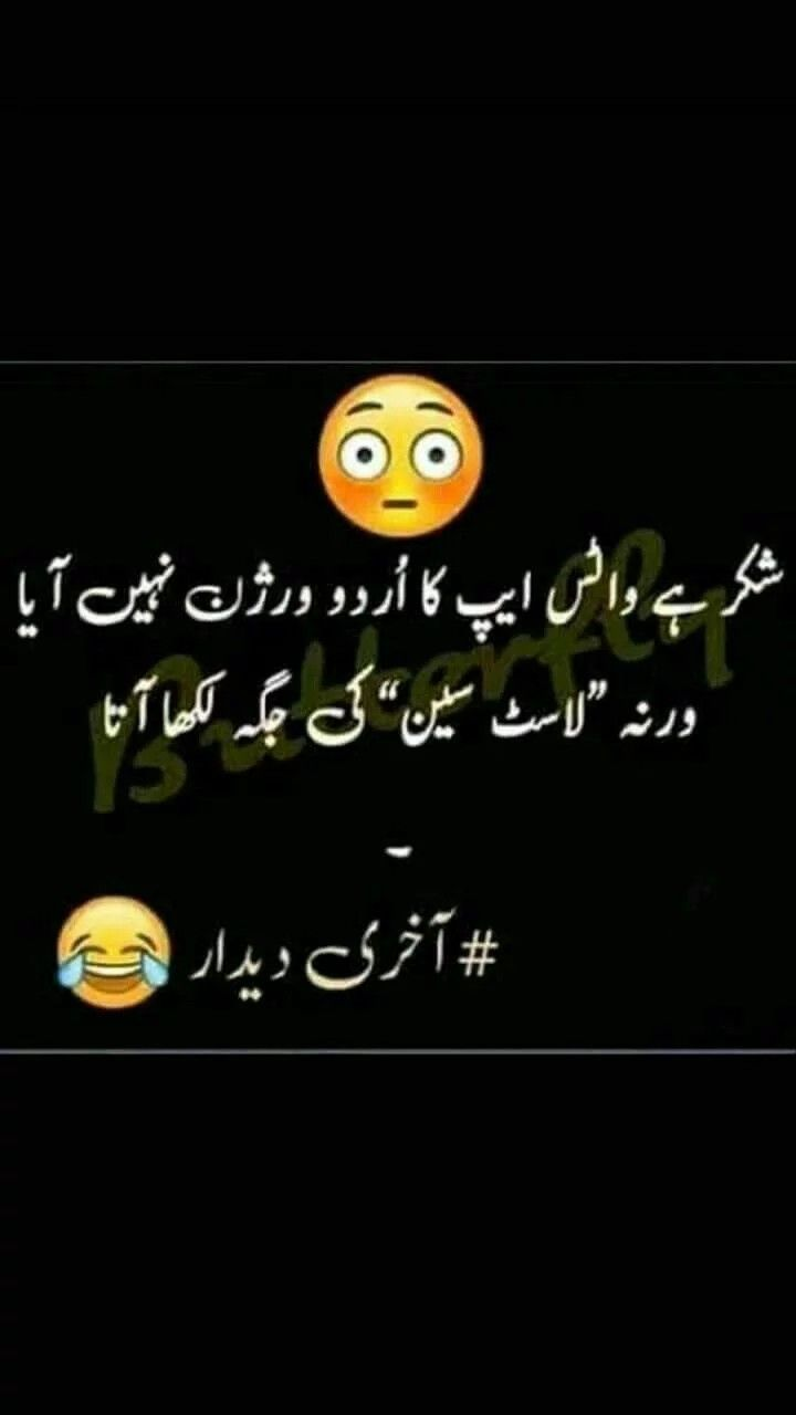 Pin By Saba Gul On Urdu Quotes Fun Quotes Funny Funny Joke Quote Cute Funny Quotes