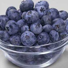 How to Grow Blueberries: Organic Gardening
