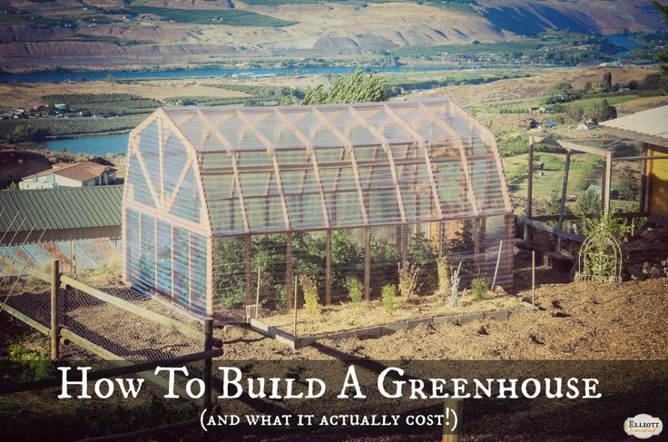 How To Build A Greenhouse and What it Actually Cost.