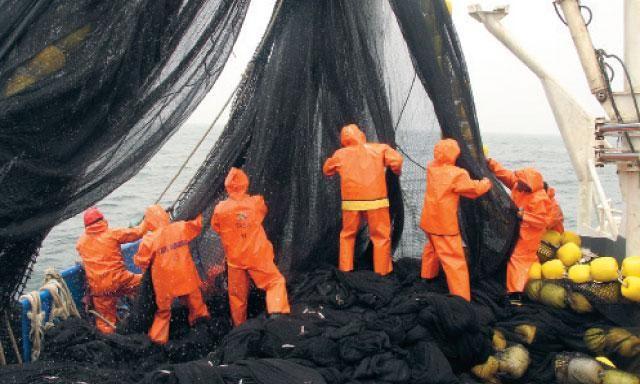 Extracción pesquera. Así se realizan, con grandes redes, las operaciones de pesca industrial de anchoveta en el mar peruano.