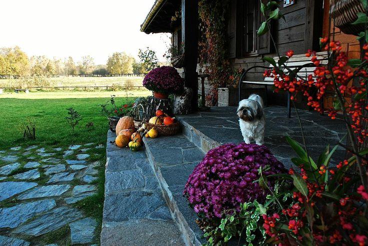 "Autumn in ""Swans"" Riverside Manor"