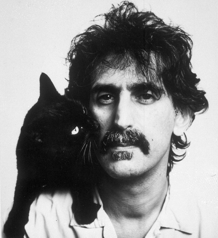 Frank Zappa and his black cat