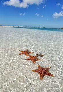 Naturisme vakantie: Naturisme op Cuba: Naturisme Vakantie, Tout Inclusive, Maria Ii, Nature Op, Santa Maria, Cayo Santa, Naturisme Op, Nature Vakantie, Cuba
