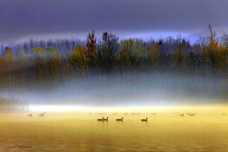 "500px / Photo ""La lagune "" by Andre Villeneuve"