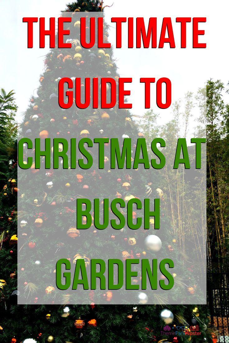 567a621a19ae4d94d20c460eeea31969 - Tips For Christmas Town Busch Gardens