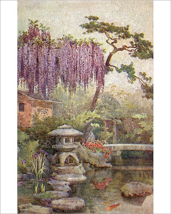 Print Of Kyoto Japan Wisteria Growing In A Japanese Garden In 2020 Japan Culture Art Japanese Garden Kyoto Garden