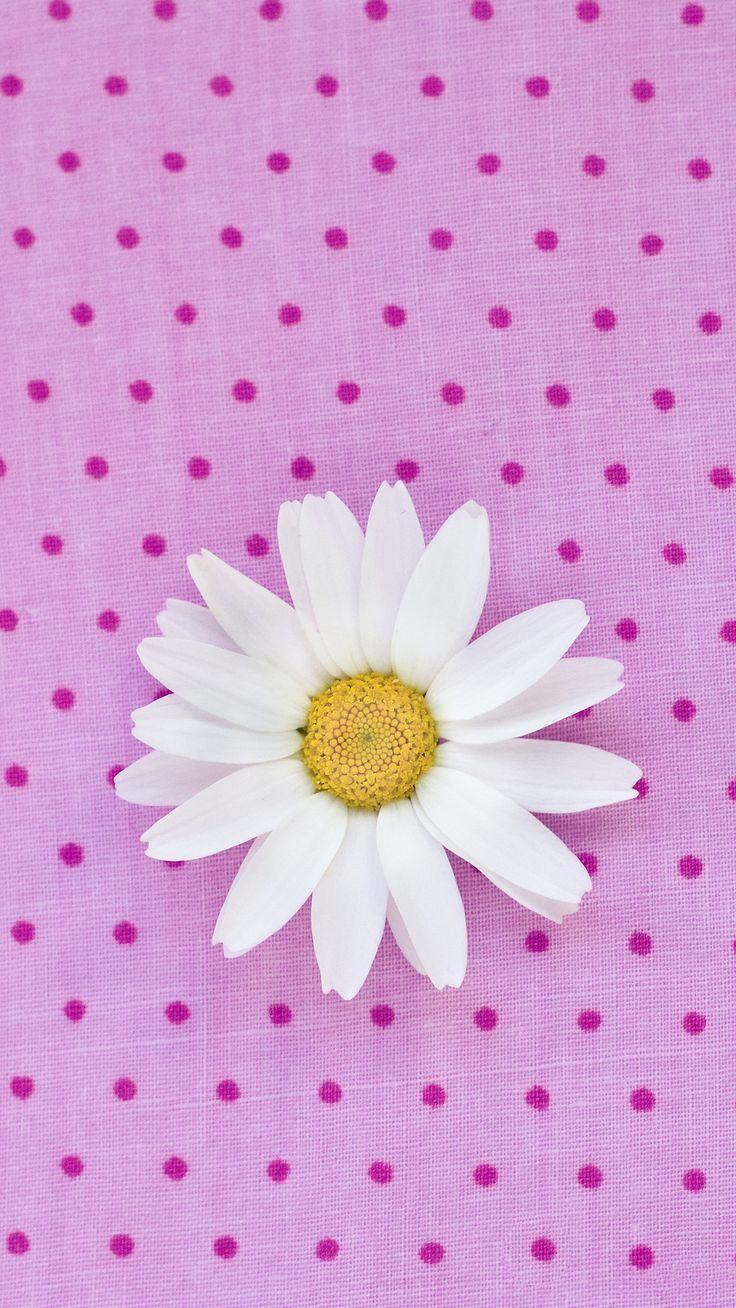 Iphone 6 wallpaper tumblr flowers - Cute Flower