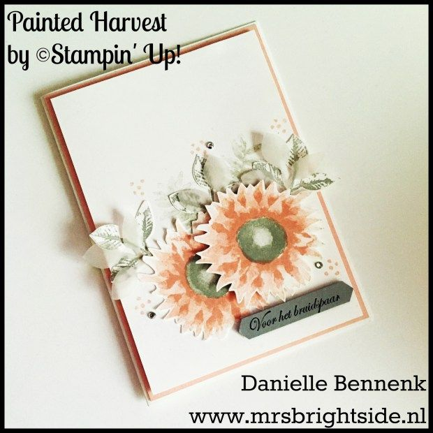 Painted Harvest, wink of Stella by Stampin' Up! Spotlight project - Mrs. Brightside - Danielle Bennenk