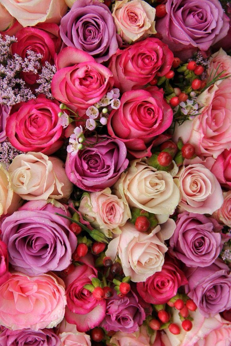 Цветы букеты картинки на телефон