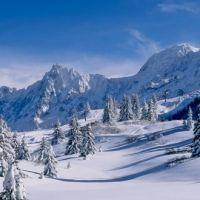 Les Houches | Site Officiel des Stations de Ski en France : France Montagnes - Famille Plus  http://www.france-montagnes.com/station/les-houches
