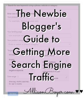 The Newbie Blogger's Guide to Getting More Search Engine Traffic