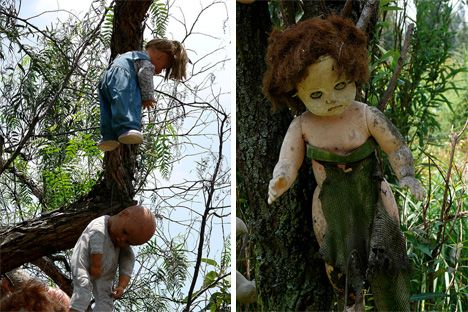 The Island of the Dolls (Isla de las Munecas) sits in the canals south of Mexico City and is the current home of hundreds of terrifying, mutilated dolls. Their severed limbs, decapitated heads, and blank eyes adorn trees, fences and nearly every available surface. The dolls appear menacing even in the bright light of midday, but in the dark they are particularly haunting.
