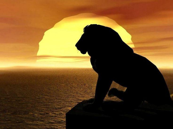Силуэт льва на закате #картинки #фото #силуэт #мультфильмы #лев #животные #закат #море