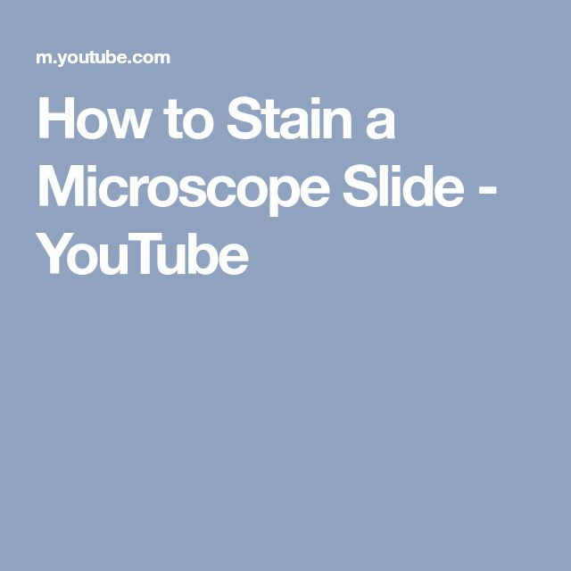 How to Stain a Microscope Slide - YouTube