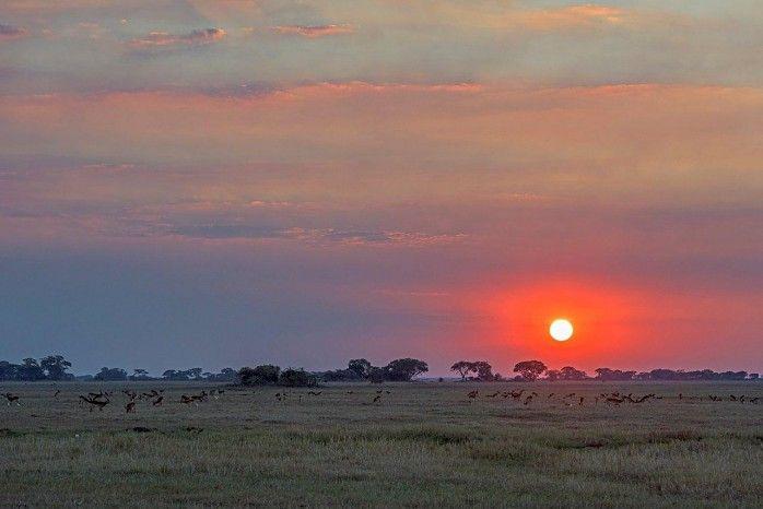 Great backdrop for sundowners in the Busanga Plains - Busanga Bush Camp