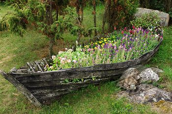 The weathered wood of this old boat adds contrast in texture to the flowers planted inside