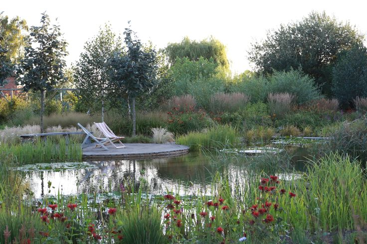 early morning, flower meadow and Swimming Pond, Ellicar Gardens
