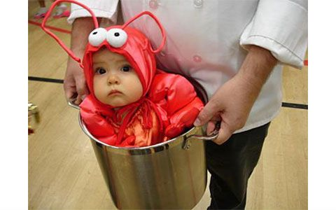 This lobster in a pot is a funny baby Halloween costume