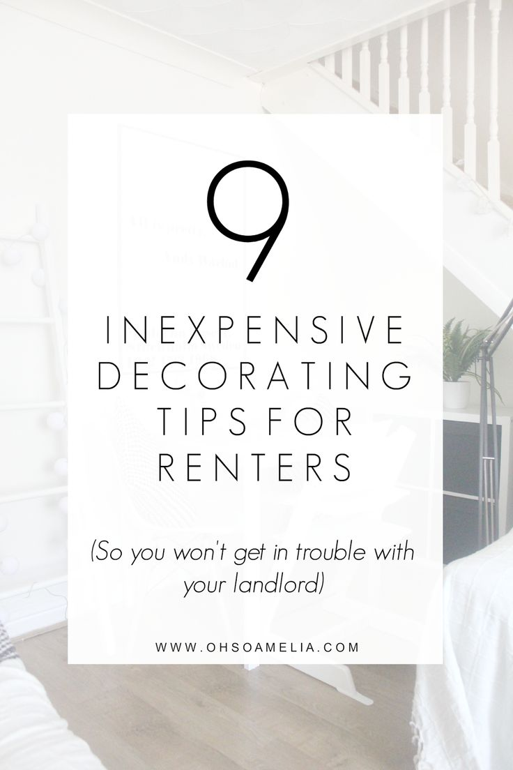 Apartment Decorating For Renters best 10+ renters tips ideas on pinterest | decorating rental