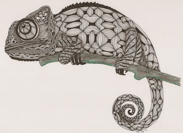 17 Best Images About Doodles  Zentangles  Zendoodles