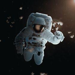 Feathers  Astronaut