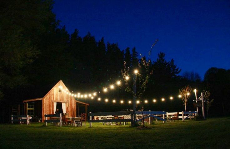Evenings at Old Forest School.