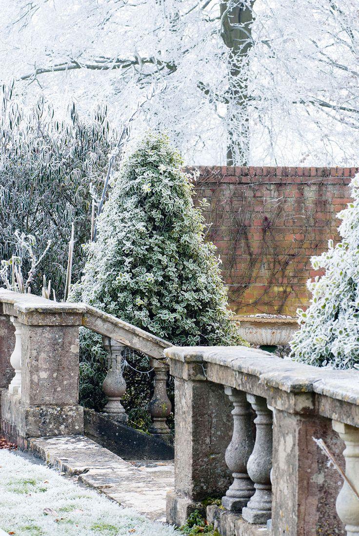 188 best winter garden images on pinterest winter garden