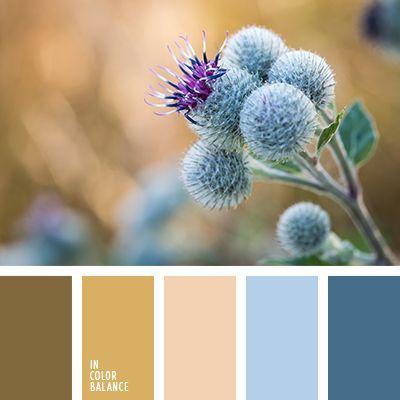 голубой, голубой и коричневый, контрастное сочетание теплых и холодных тонов, коричневый, коричневый и синий, коричневый и черный, оттенки коричневого, оттенки оранжевого и коричневого, оттенки серо-синего цвета, оттенки сине-серого цвета, палитры для