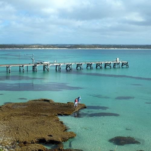 Kangaroo Island. Image courtesy of Tourism Australia. #sa #kangarooisland #australia Kangaroo Island accommodation in www.ozehols.com.au
